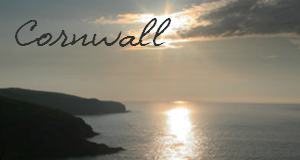 Click for Dog Friendly Hotels in Cornwall index