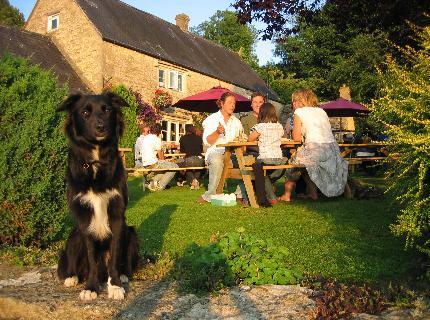 Dog Friendly Crown Inn at Frampton Mansell
