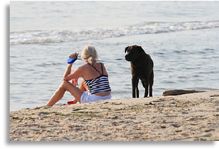 Lady on the beach with her dog